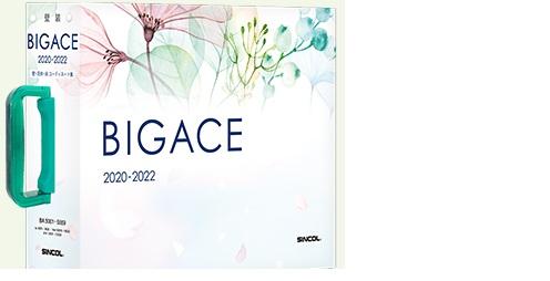 bigace_2020_2022
